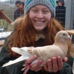 16 Taubenbesichtigung